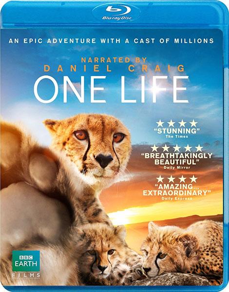 دانلود مستند یک زندگی BBC: One Life 2011