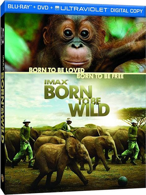 دانلود مستند متولد حیات وحش Born to Be Wild 2011