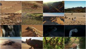 دانلود قسمت چهارم فصل دوم مستند سیاره زمین Planet Earth 2 2016 S02-E04