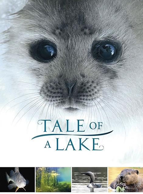 دانلود مستند داستان یک دریاچه Tale of a Lake 2016
