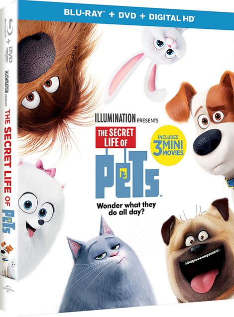 دانلود انیمیشن The Secret Life of Pets 2016 BluRay