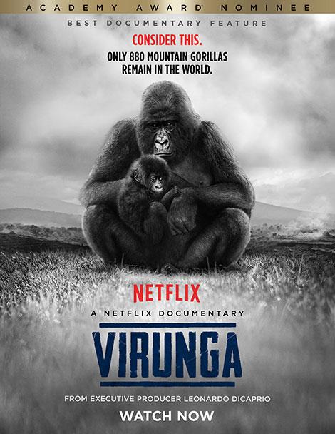 دانلود دوبله فارسی مستند ویرونگا Virunga 2014