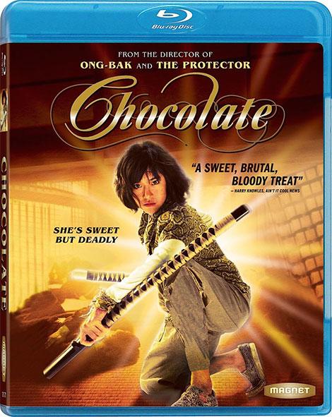 دانلود دوبله فارسی فیلم شکلات Chocolate 2008