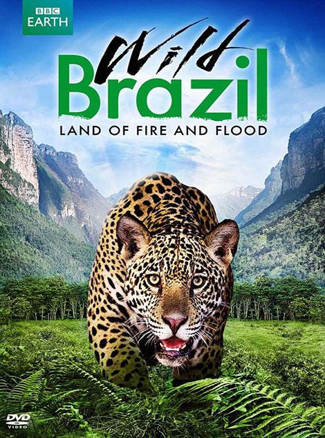 دانلود مستند حیات وحش برزیل BBC Earth: Wild Brazil 2014